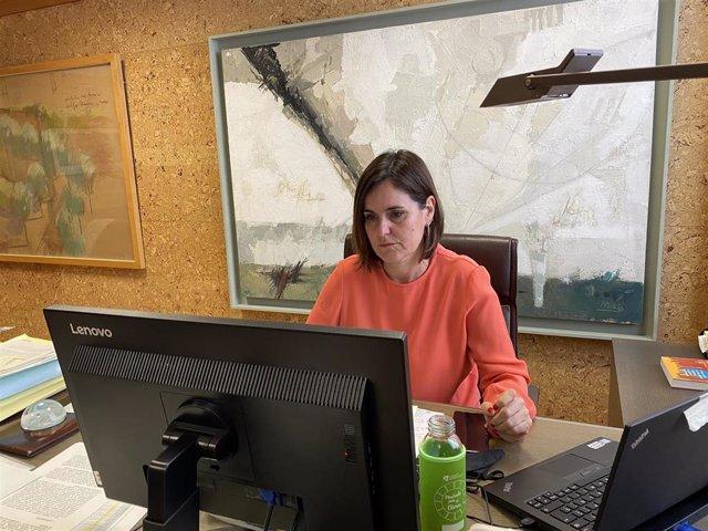 La directora general de Turismo, Elena Allué, se ha reunido de forma virtual con el secretario de Estado de Turismo, Fernando Valdés,