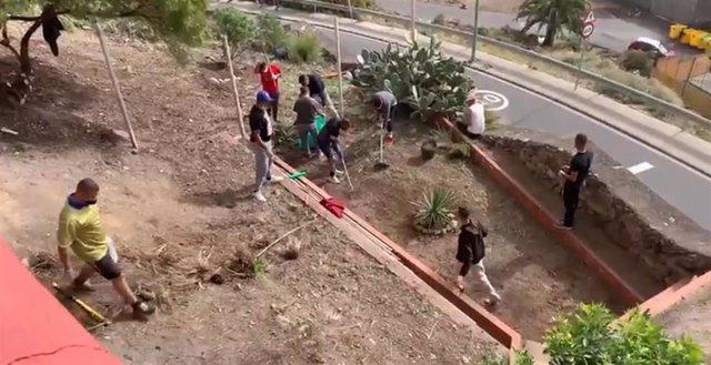 Un grupo de migrantes colabora con los vecinos en labores de desbrozo y plantación en Las Palmas de Gran Canaria