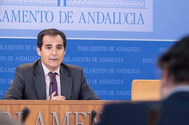 """PP pide """"corrección"""" de recortes a ayuntamientos andaluces en violencia de género y presenta PNL en el Parlamento"""