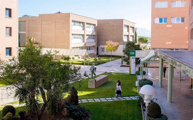 Archivo - UGT defiende los complementos docentes e investigadores para el profesorado universitario temporal en Andalucía