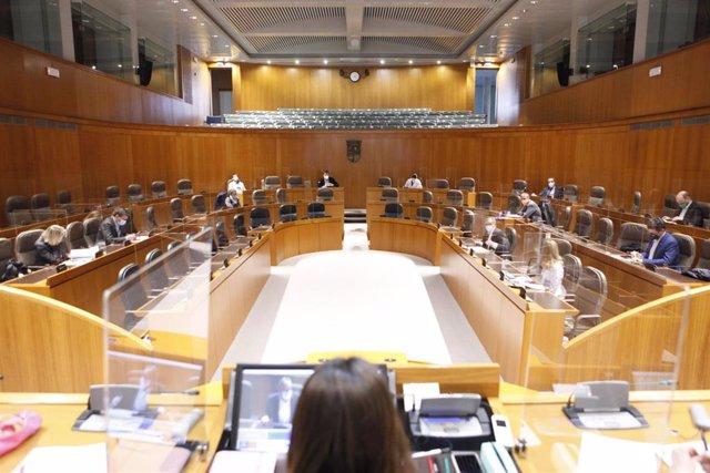 El Parlamento aragonés apuesta por la vivienda colaborativa en el medio rural