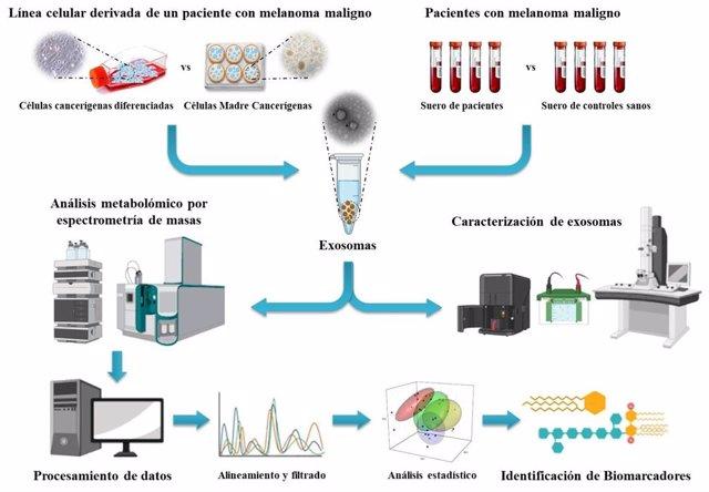 Investigadores españoles identifican nuevos biomarcadores de pacientes con melanoma maligno
