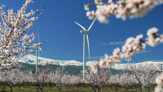 Iberdrola inicia la construcción de un conjunto eólico de 79 MW entre Málaga y Sevilla
