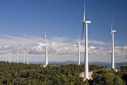 Acciona prevé duplicar su negocio de renovables en cinco años con la salida a Bolsa de su filial energética