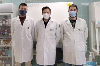 """Foto: Cvirus.- Un estudio propone nanomateriales basados en el carbono como tratamientos """"prometedores"""" contra el covid-19"""