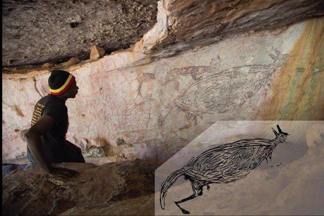 Un aborigen inspeccionando una pintura naturalista de un canguro, que se determinó que tiene más de 12,700 años según la edad de los nidos de avispas de barro superpuestos. El recuadro es una ilustración de la pintura.