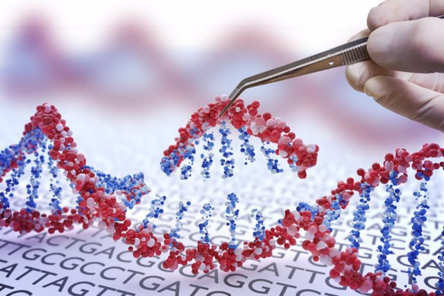 Archivo - Edición genética.
