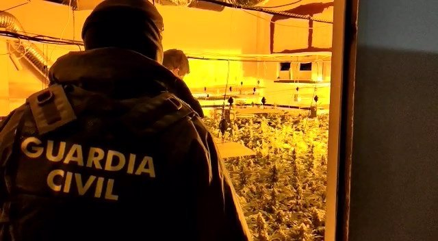 Desarticulado un centro de producción de marihuana en Granada