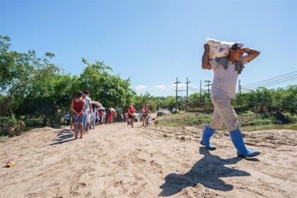 Acción contra el Hambre avisa de que la inseguridad alimentaria severa se ha triplicado en Latinoamérica
