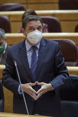 El ministro de Agricultura, Pesca y Alimentación, Luis Planas interviene durante una sesión de control al Gobierno en el Senado