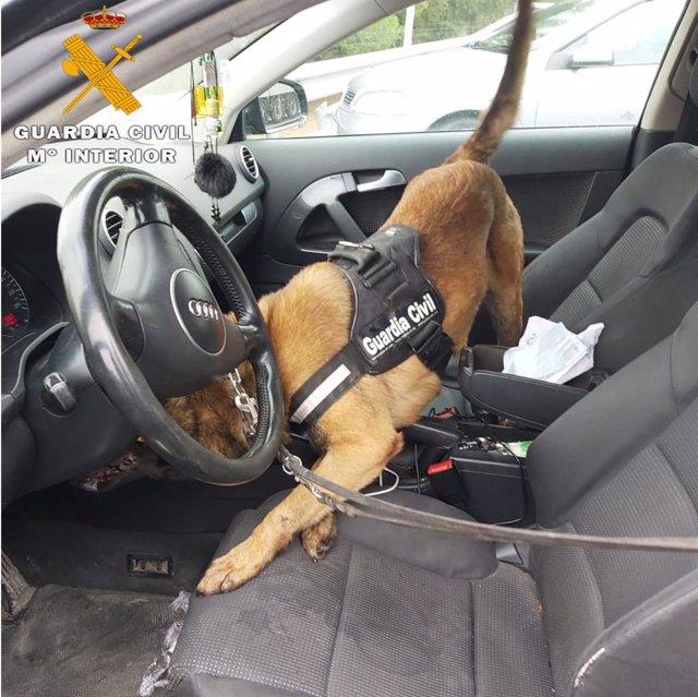 La droga, oculta tras el cuentakilómetros de un vehículo, fue marcada por un can detector de estupefacientes del Cuerpo.