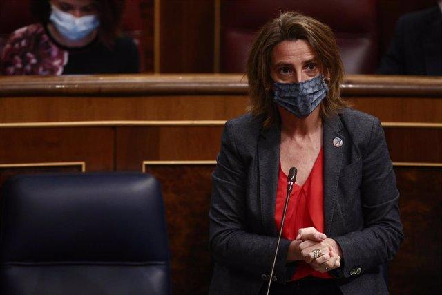 La vicepresidenta cuarta y ministra para la Transición Ecológica y el Reto Demográfico, Teresa Ribera, interviene durante una sesión de Control al Gobierno en el Congreso