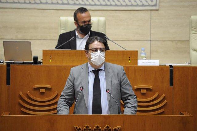 El consejero de Sanidad y Servicios Sociales, José María Vergeles, en su comparecencia en la Asamblea.