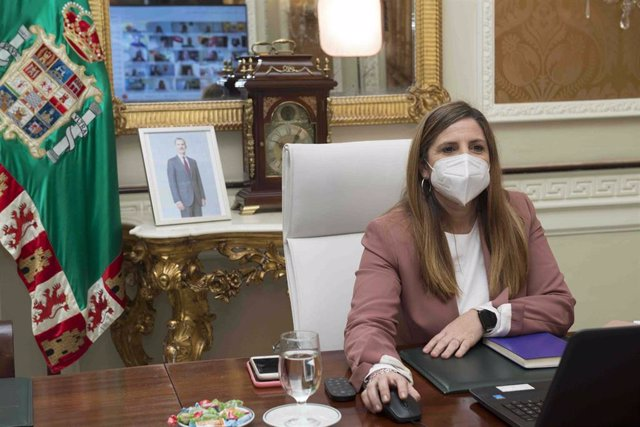 Irene García en el Pleno de febrero celebrado de forma telemática