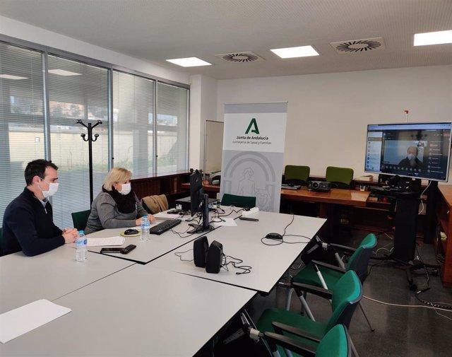 Archivo - Imagen de archivo de la delegada de Salud en Huelva, Manuela Caro, se reúne por videoconferencia con los alcaldes para abordar la situación.