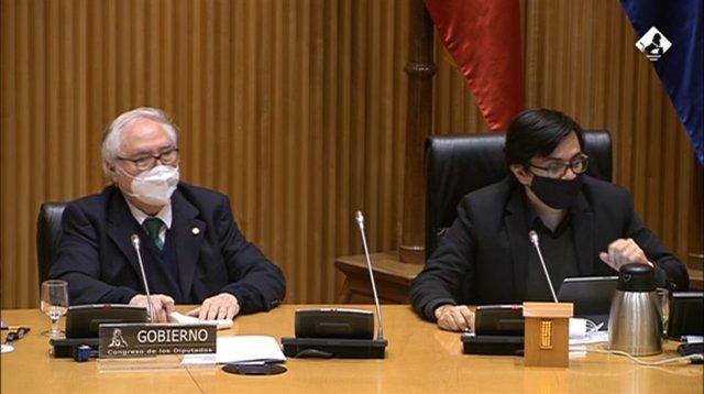 El ministro de Universidades, Manuel Castells (izq), en su comparecencia en la Comisión de Ciencia, Innovación y Universidades del Congreso