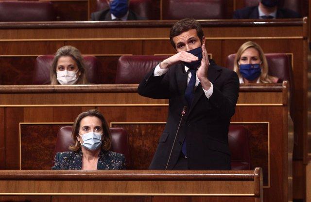 El presidente del PP, Pablo Casado, interviene durante una sesión de control al Gobierno.
