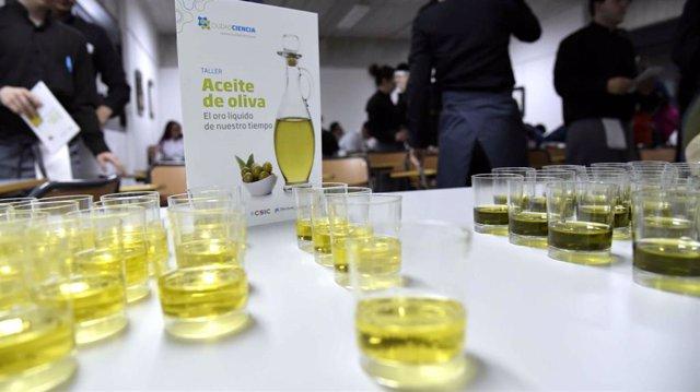 Archivo - Taller cata de aceite de oliva.
