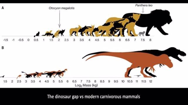 Brecha entre dinosaurios y mamíferos carnívoros modernos