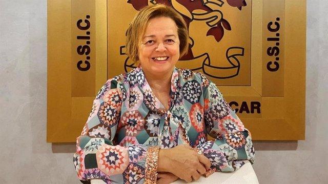 Archivo - Rosa María Menéndez López, presidenta del Consejo Superior de Investigaciones Científicas (CSIC)