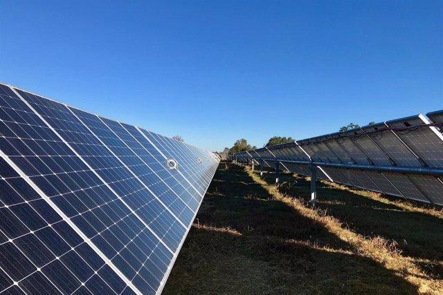 Archivo - Planta fotovoltaica