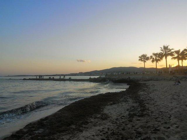 Archivo - Playa de Palma de Mallorca