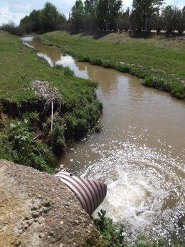 Archivo - [Comunicacion.Csic.Andalucia] Ndp Fuentes De Contaminación Por Nitratos En Las Aguas Superficiales Vertientes A Doñana