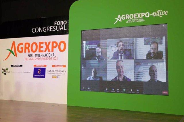 Uno de los encuentros virtuales durante la pasada edición de Agroexpo.