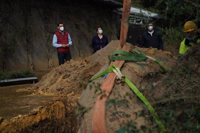El presidente de la Junta de Andalucía, Juanma Moreno, asiste en los jardines de San Telmo al trasplante de un acebuche de cerca de 300 años.