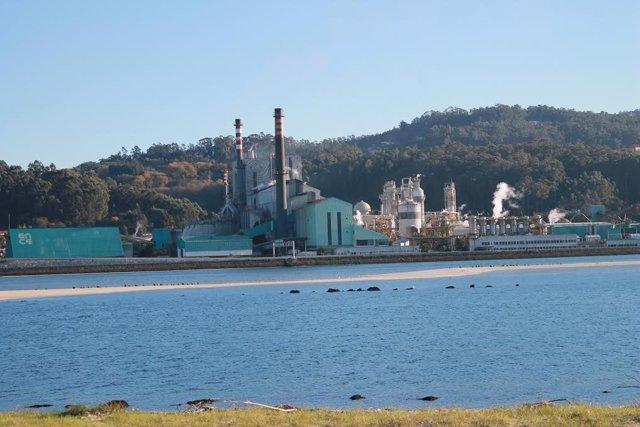 Archivo - Fábrica de Ence en Lourizán, en la ría de Pontevedra