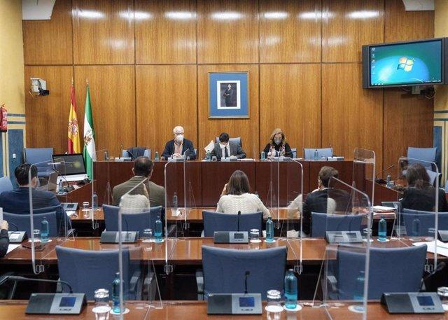 Foto de archivo de la comisión de investigación sobre la Faffe del Parlamento andaluz. Citación del exsecretario general de Empleo Francisco Javier Aguado