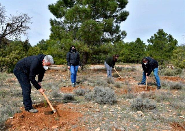 Plantación Simbólica De Especies Autóctonas En Granada Para Conmemorar El 28F (Consejería De Agricultura, Ganadería, Pesca Y Desarrollo Sostenible)