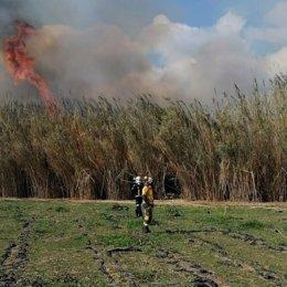 Efectivos trabajan en la extinción del incendio forestal declarado en el Torrent de Sant Miquel.