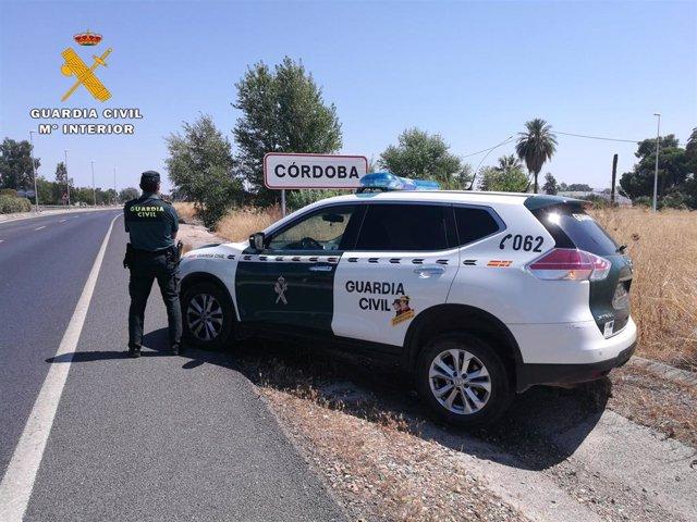 Archivo - Córdoba.- Sucesos.- Investigadas cuatro personas tras ser sorprendidas cuando desmantelaban una nave en Encinarejo