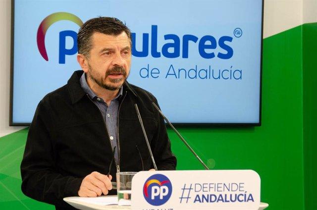 El vicesecretario general del PP andaluz, Toni Martín, en rueda de prensa
