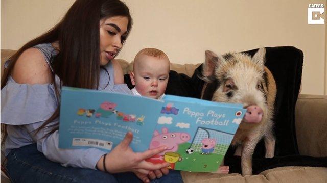 Este niño de 13 meses vive con una cerdita llamada Peppa, en honor a Peppa pig, su dibujo animado preferido