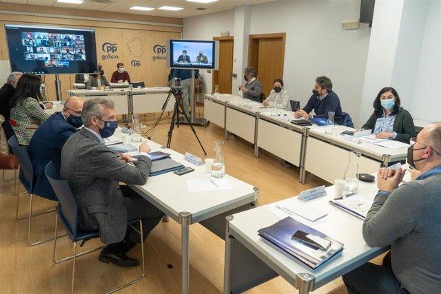 Comité de dirección do PPdeG.