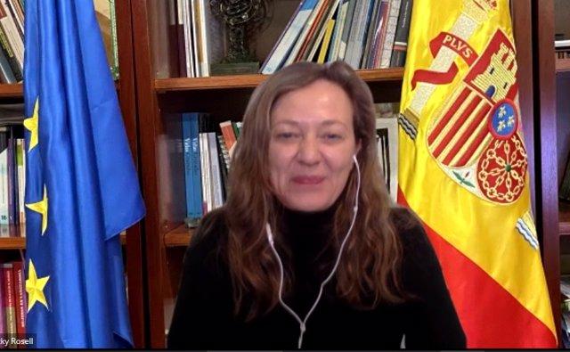 La delegada del Gobierno contra la Violencia de Género, María Victoria Rosell, interviene en la jornada online organizada por CCOO C-LM.