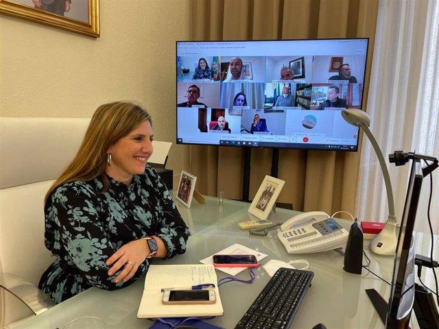 Irene García en reunión telemática con alcaldes