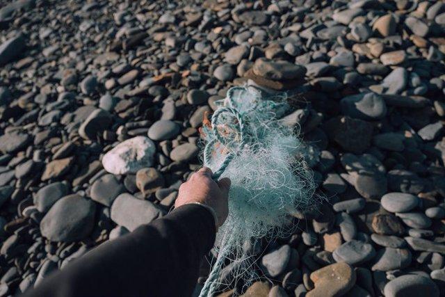Fundación Ocean Born