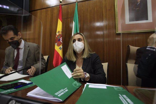 La consejera de Fomento, Infraestructuras y Ordenación del Territorio, Marifrán Carazo.
