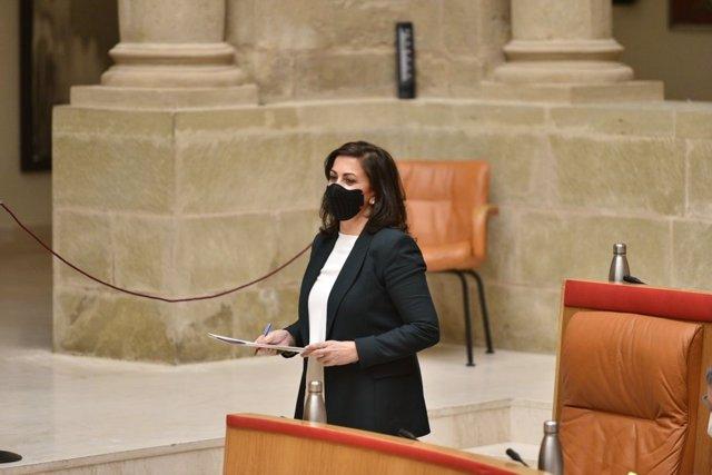 La presidenta del Gobierno, Concha Andreu, en el Parlamento riojano