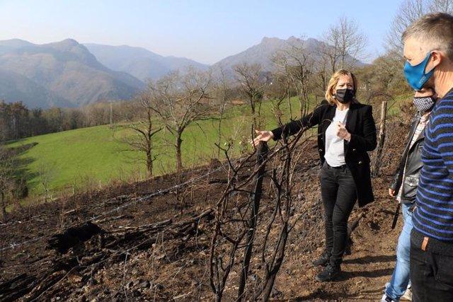 La portavoz de la Diputación de Gipuzkoa, Eider Mendoza, en una zona de monte quemado por el incendio en Irun