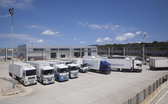 Archivo - Transporte de mercancías en el puerto de Alcúdia