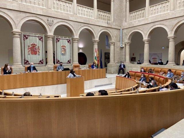 La diputada de IU La Rioja, Henar Moreno, defendiendo una de las Proposiciones No de Ley en el Parlamento riojano
