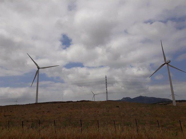 Archivo - Molinos de viento en la N-340, en Tarifa (Cádiz)