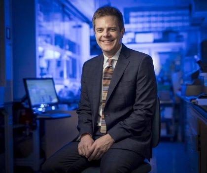 Demuestran la eficacia de un 'cóctel' de anticuerpos monoclonales contra las variantes del coronavirus
