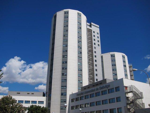 Archivo - Arxiu - Hospital de Bellvitge