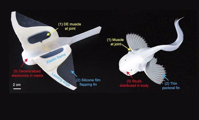 Una ilustración del robot blando de aguas profundas autoalimentado en la Fosa de las Marianas