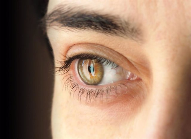 Los principales factores de riesgo de la aparición del glaucoma son tener más de 40 años de edad, sufrir hipertensión ocular y tener antecedentes familiares de primer grado.